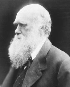 Charles Darwin. Courtesy of the Library of Congress.