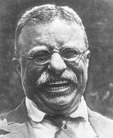 Theodore Roosevelt. Courtesy of the Library of Congress.