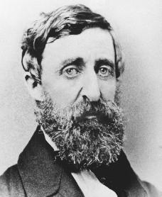 Henry David Thoreau. Courtesy of the Library of Congress.
